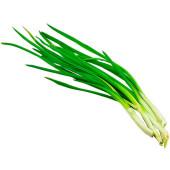 Лук зеленый весовой