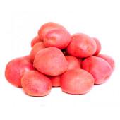 Картофель красный  вес