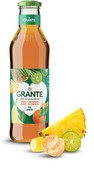 Сок гранте 0,75л ананас-мандарин-банан-каламанси ст/б